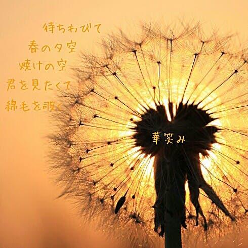 image=489841132.jpg